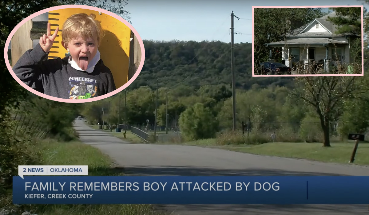 Young Boy Mauled To Death By Pet Dog His Family Rescued Just Three Weeks Before